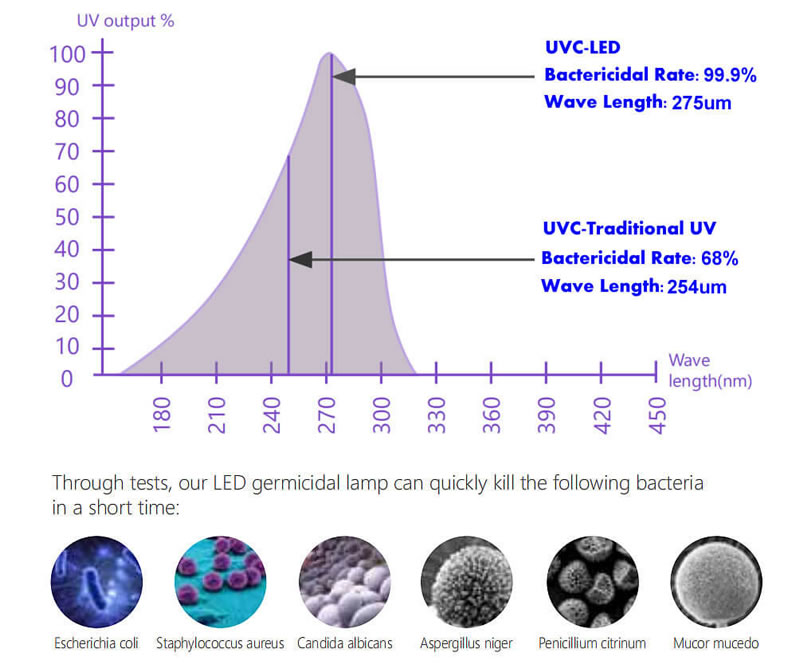 disinfection rate of uv light wand